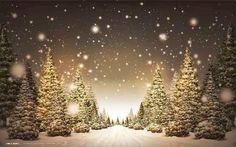 Sfondi di Natale Foresta innevata