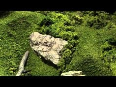Ready Rocks How To | Model Scenery | Woodland Scenics - YouTube