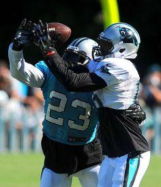 Jerseys NFL Wholesale - Carolina Panthers on Pinterest | Carolina Panthers, Cam Newton and ...
