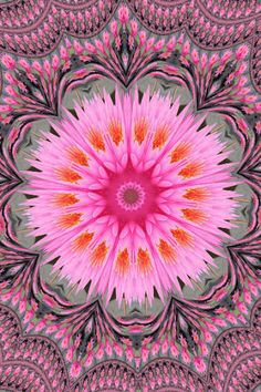 Flower Mandala. Could not trace the artist
