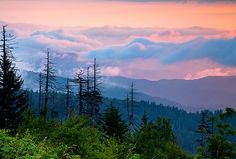 Sunrise from Clingman's Dome  Smoky Mountains