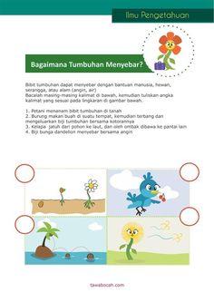 Belajar Anak - Tumbuhan 6
