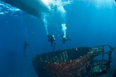 The HMAS Brisbane wreck is definitely one of Australia's best wreck dives. It's located about six kilometers offshore from Mooloolaba along the Sunshine Coast. With depths from 6-28 meters, HMAS Brisbane is one wreck most divers can experience with ease.