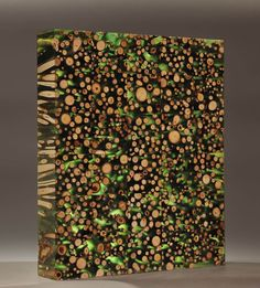 Mayme Kratz, Garden Wall (Cottonwood Study), 2015, cottonwood branches in resin, 17.5 x 14.5 x 3 inches