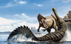 "the casual paleontologist | thagomizers: Suchomimus tenerensis (""crocodile..."