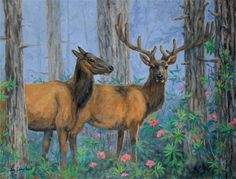 "Daily+Paintworks+-+""Elk+and+Rhoddies""+-+Original+Fine+Art+for+Sale+-+©+Joy+Campbell"