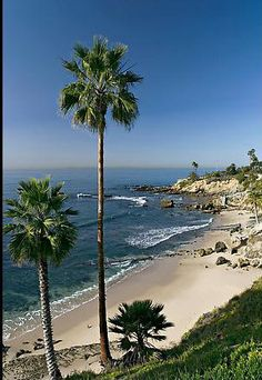 Laguna Beach, Orange County, California, USA - one of the most beautiful places in the entire world! Oh The Places You'll Go, Great Places, Places To Travel, Places To Visit, Palm Bay Florida, Laguna Beach, Cabo San Lucas, Dream Vacations, Vacation Spots