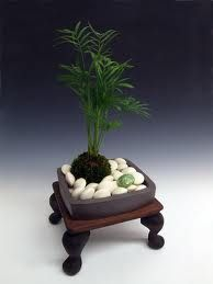 Kokedama, plantas sin macetas. - Taringa!