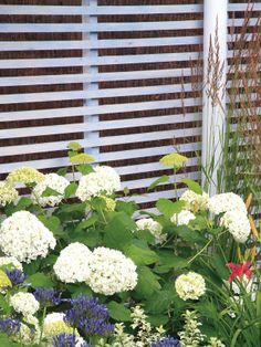 Stylish backyard border ideas--> http://hg.tv/14cld