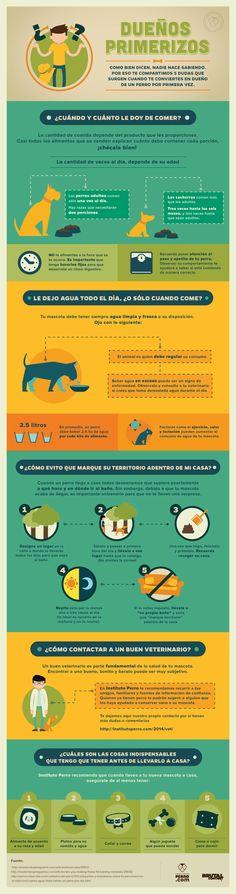 Te compartimos 5 dudas que surgen cuando te conviertes en dueño de un perro por primera vez. http://institutoperro.com/?p=4197