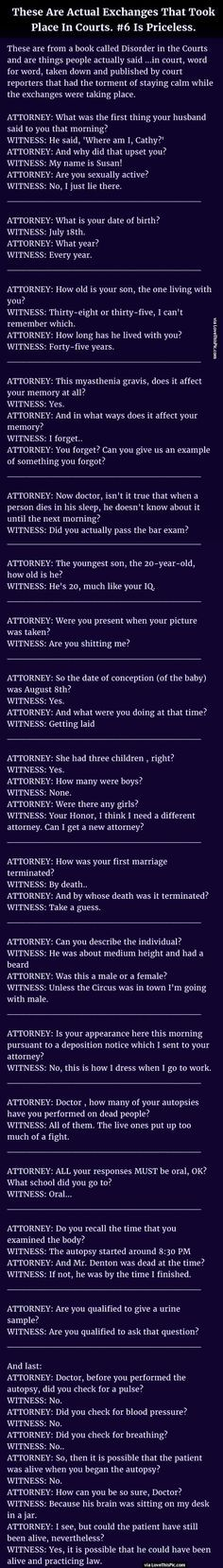 These Are Actual Exchanges That Took Place In Courts, This Is Priceless funny jokes story lol funny quote funny quotes funny sayings joke hilarious humor stories funny jokes best jokes ever best jokes