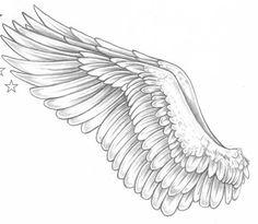 Nice Wings ⭐