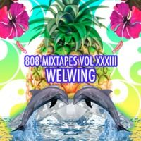 808 Mixtapes Vol. 33 (Live on KTUH, December 14, 2012) by Welwing on SoundCloud