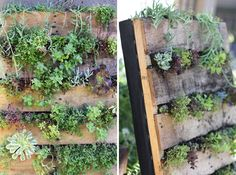 25 things to make with old pallets