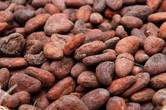 "Suffice it to say, ""raw"" cacao nibs are very likely roasted, and therefore not raw at all. So are raw cacao nibs really different from other. Raw Cacao Nibs, Buy Coffee Beans, Clove Oil, Artisan Chocolate, Chocolate Factory, Best Coffee, Turmeric, Cocoa, Healthy Living"