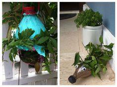 Okul öncesi bitkiler konusu fen doğa etkinliği ve sanat çalışması