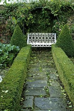 Classic garden elements - an old flagstone path, clipped box a beautiful bench