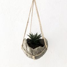 Cement Pots, Plant Hanger, Terrarium, Macrame, Plants, Handmade, Home Decor, Bonito, Terrariums