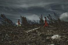 dance/burned trees