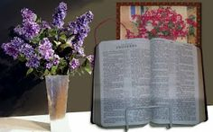 Two of my favorite things: Lilacs and the book of Proverbs--the guide for shepherding the hearts of children