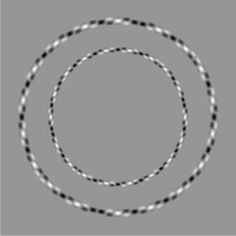 Two perfectly round circles #brainteaser #cool