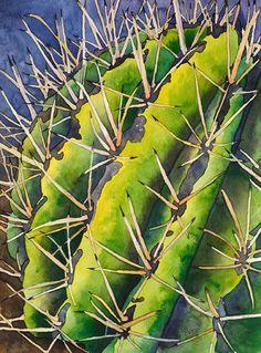 Barrel-Cactus_2010