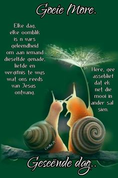 Good Morning Messages, Good Morning Wishes, Lekker Dag, Evening Greetings, Afrikaanse Quotes, Goeie More, Prayer Quotes, Verses, Qoutes