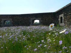 13-Fort-St-Jean « Landscape Architecture Works | Landezine