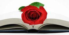 Feliz Sant Jordi a tod@s
