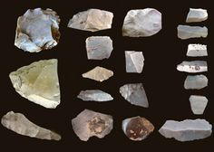 Archaeology: North America's first tool users?