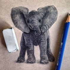 Not loving it as much as the adult I did the other day but it was still fun to do. I haven't tried to draw a baby yet, hopefully the next one goes a bit smoother. Apparently I'm on an elephant drawing bender right now.  #art #artwork #sketch #draw #drawing #graphite #pencil #pencildrawing #worldofpencils #artofdrawingg #instaart #instaarty #instaartsy #instaartwork #instaartist #bestartfeaturea #elephant #elephantdrawing #nature #animals #realistic #elephantart #phanasu #instartpics…