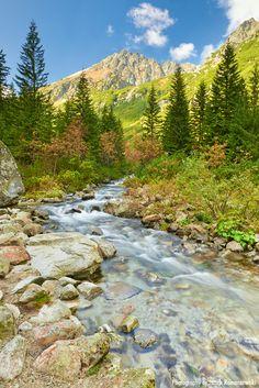 The Roztoka Stream (Potok Roztoki) in The Roztoka Valley (Dolina Roztoki). The beautiful Tatra National Park. The High Tatras, Carpathian Mountains. Amazing landscape, Poland. Tatry, Polska. Nature reserve. World Network of Biosphere Reserves (WNBR) - Unesco. Fotograf Jarek Konarzewski