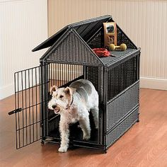 A Dog Crate: To Train & Transport Your Pet