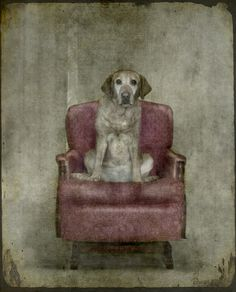 princess shimay by jamie heiden, via Flickr