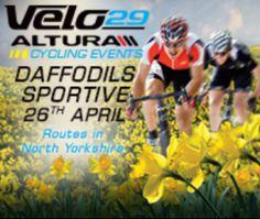 Velo29-Altura Daffodils Sportive