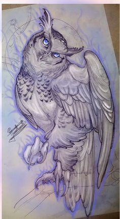Búho Owl Tattoo Drawings, Bird Drawings, Animal Drawings, Drawing Sketches, Sketch Tattoo Design, Owl Tattoo Design, Owl Art, Bird Art, Lechuza Tattoo