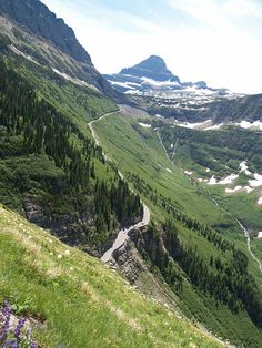 P7111408 View of Going to the Sun Highway from Highline Trail, Glacier National Park, MT July 11, 2009.JPG - Going to the Sun highway from the Highland Trail   ..rh