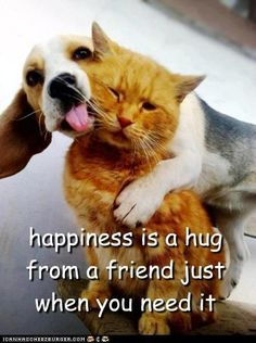 Happiness is . . . a hug from a friend just when you need it.