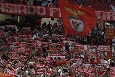 A vitória de ontem por 3-2 contra o Moreirense FC, foi a vitória 900 do SL Benfica em casa, para a Primeira Liga.