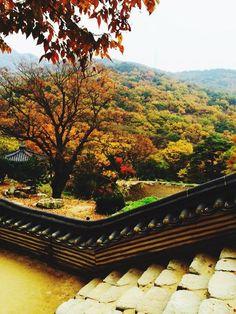 Sauth Korea