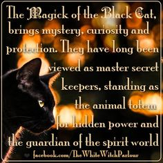 Black cat, Symbolism, spirit world, spiritual, meaning, magickal, totem… Wiccan Witch, Wicca Witchcraft, Magick, Samhain Wicca, Statues, Animal Spirit Guides, Cat Spirit Animal, Image Blog, View Master