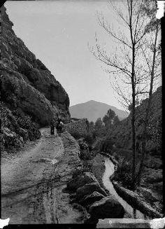 Archivo: RUIZ VERNACCI. Título: [Hombre con burro. Acequia a un lado del camino]. Cortesía: CC BY-NC-ND Instituto del Patrimonio Cultural de España, Ministerio de Educación, Cultura y Deporte de España.