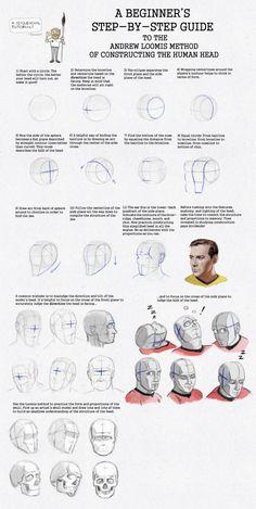 Andrew Loomis Method of Constructing the Human Head Head Anatomy, Anatomy Drawing, Anatomy Art, Drawing The Human Head, Drawing Heads, Drawing Faces, Figure Drawing Female, Figure Drawing Reference, Drawing Lessons