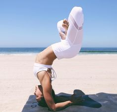 169k Followers, 1,071 Following, 1,760 Posts - See Instagram photos and videos from Briohny & Dice (Bryce Yoga) (@bryceyoga)