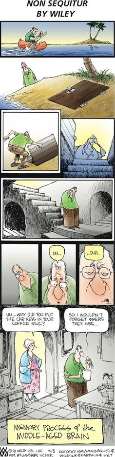 Non Sequitur - So that's where my memory goes.