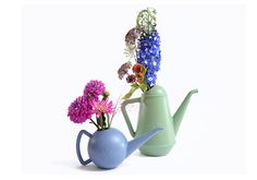 XALA Bowli Watering Can in Pigeon Grey and Butler Watering Can in Pale Green