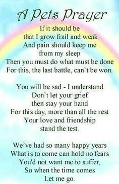 A Pet's Prayer ...