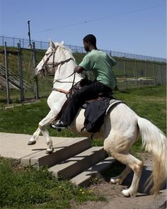 #ArtFact French-Algerian artist Mohamed Bourouissa (1978) is renowned for his dynamic photographs of youth, immigrants and everyday life in the suburbs of Paris. For 'Horseday', his most recent piece he worked together with a local community in Philadelphia (US). Fascinated by the role that horses, stables and riding plays in the life of the African American community, he organized a competition for the most elegantly decorated horse. You can see 'Horseday' until January 8 2017. [Untitled…