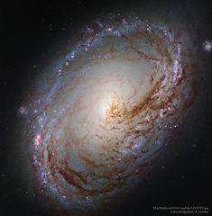 Telescópio Hubble faz foto detalhada da galáxia espiral M96