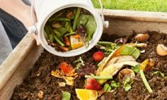 80 + things to compost.